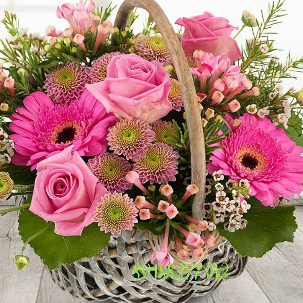 Доставка цветов в городе пятигорске бонсай в подарок мужчине